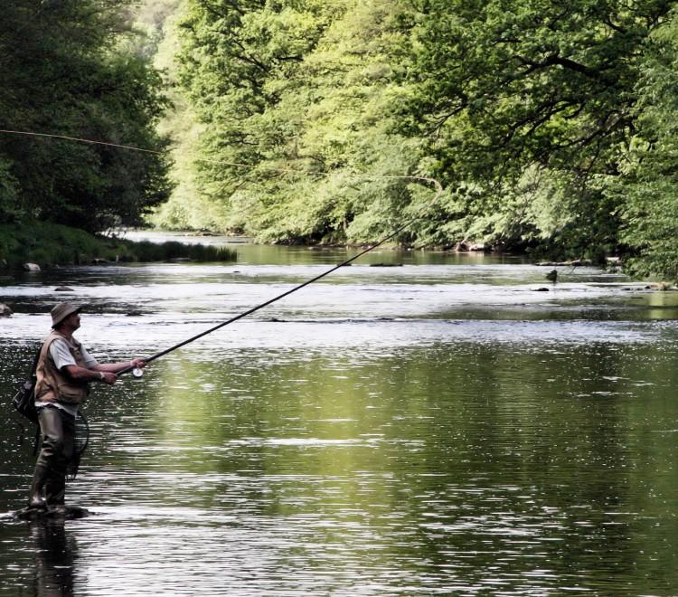 Pêche sur la Semois