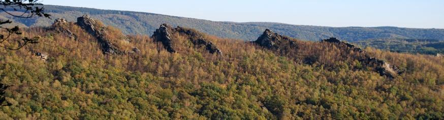 Les quatre fils Aymon, près des Cabanes au coeur de la Vallée